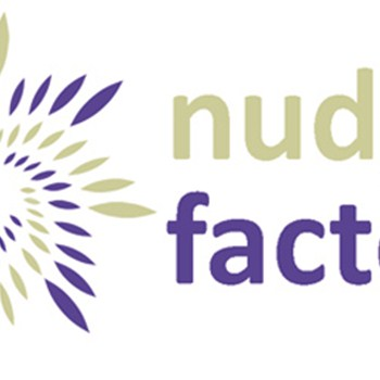 Nudge Factory